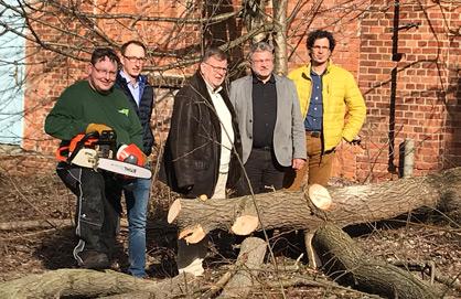 5 Männer stehen vor einem gerade gefällten Baum