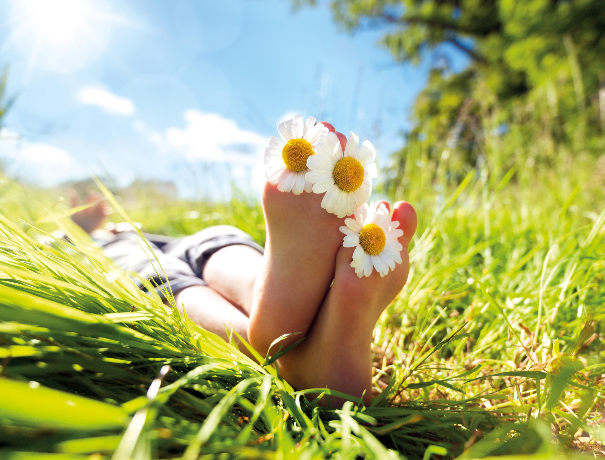Füße auf einer Sommerwiese